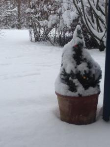Winter2014